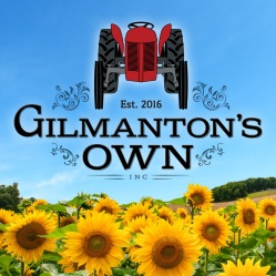 GilmantonsOwn_fbsquare_logosunflower